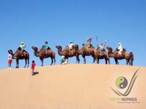 Happy camel riding