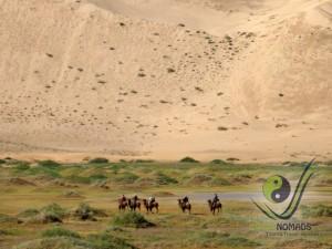 Camel riding in Khongor Sand Dunes