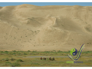 Camel riding in the Gobi