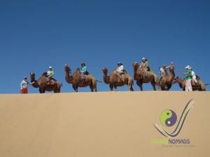 Happy camel riders