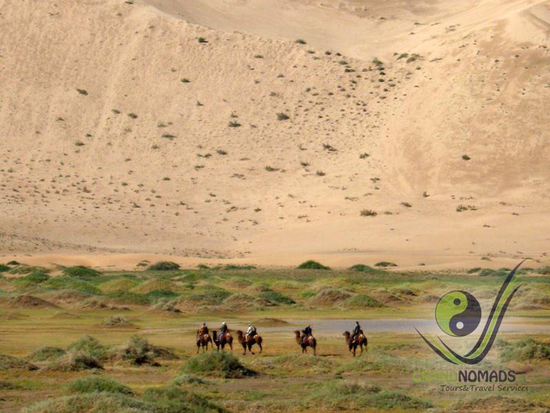 """Khongor"" Sand Dunes."