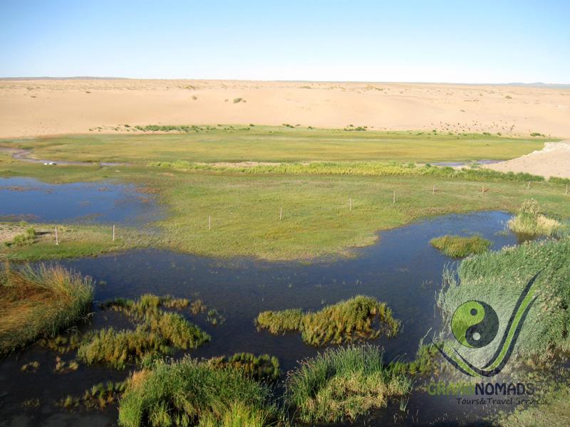 Zulganai Oasis – Khongor.